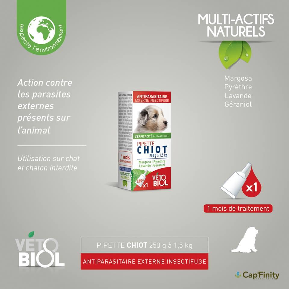 VETOBIOL Pipettes antiparasitaires chiot (250gr à 1,5kg) (1pipettes)