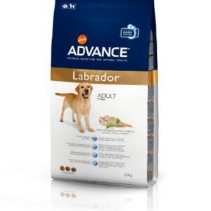 Affinity Advance Chien Race Labrador (12kg)