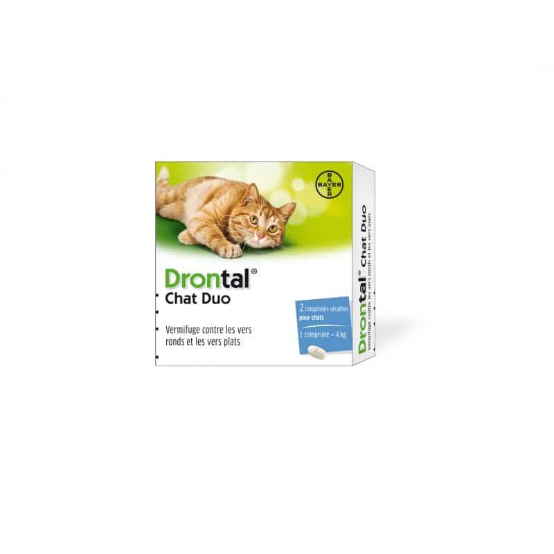 Drontal Chat vermifuge pour chats 4 comprimés