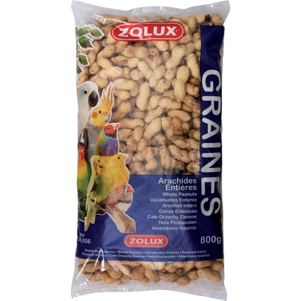 Zolux Arachides Entières 800g