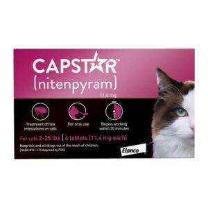 capstar chat